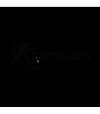 DPM01